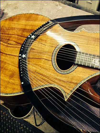 Doug Wilkes 24 String Lyre Harp Guitar