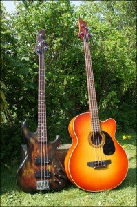 Wilkes Guitars acoustic-bass